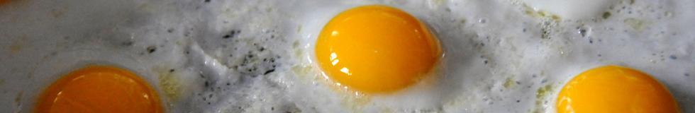 Uitsmijters & Omeletten